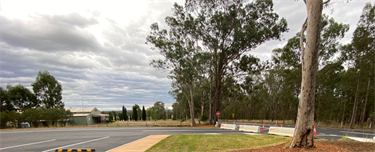 New car parking at information bay site - Wilderness Rd